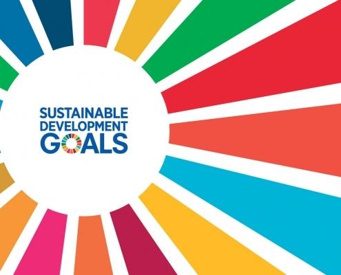 global goals 495x400 1